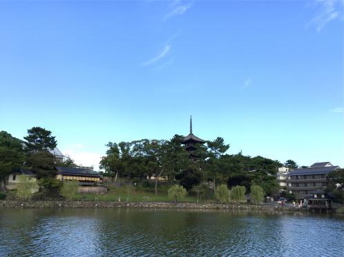 161008sarusawa.jpg