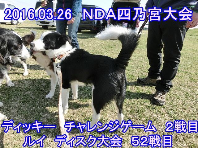 2016032702.jpg