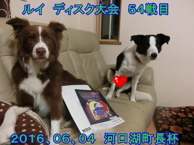 20160604.jpg