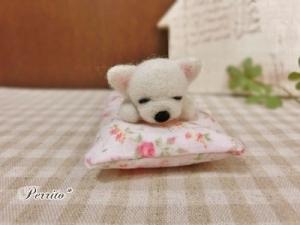 6月眠りチワワ1