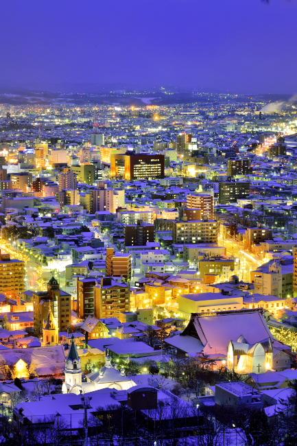t函館冬夜景