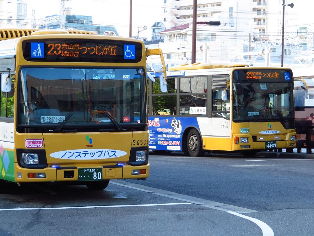 20160831-SY8.jpg