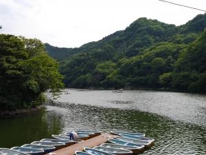 16611間瀬湖 (6)