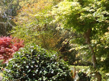 007_convert_20160415110434⑥新緑の庭