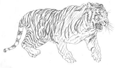 虎逃げ黒斜線