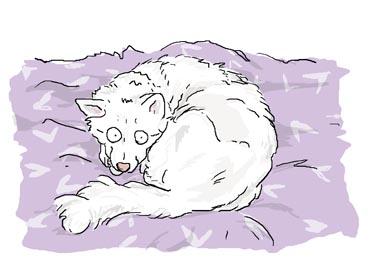 いずくりり寝