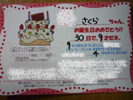 blog10823.jpg