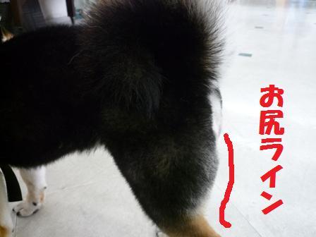 blog10830.jpg