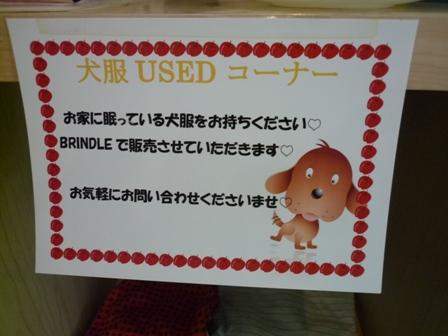 blog10834.jpg