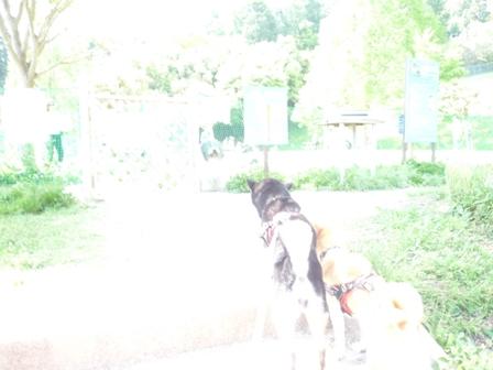 blog10846.jpg