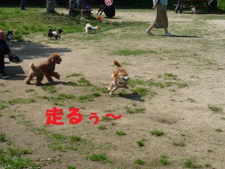 blog10848.jpg