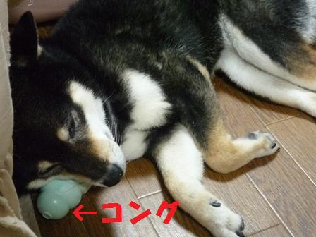 blog10880.jpg