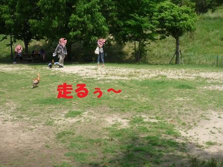 blog10937.jpg