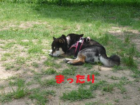 blog10938.jpg