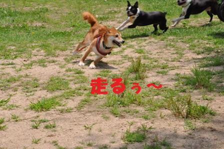 blog10944.jpg