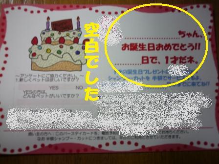 blog11018.jpg