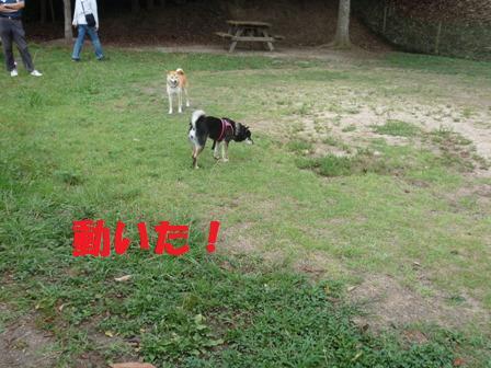 blog11044.jpg