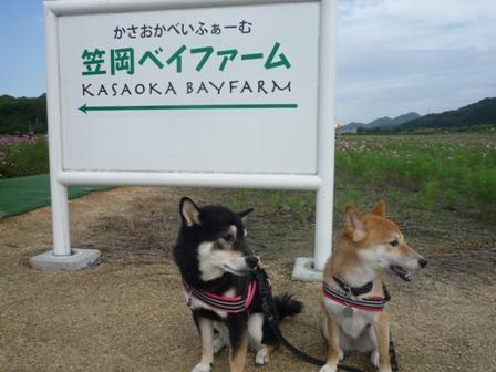 blog11176.jpg