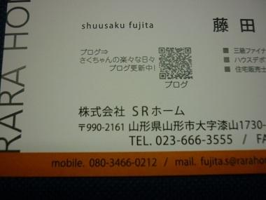 P1130150.jpg