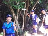 201607-cs-camp-007.jpg