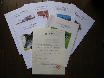 blog3382.jpg