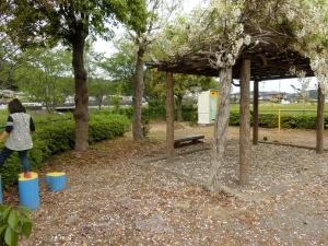 山梨三沢公園3