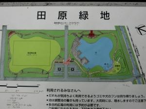 田原緑地3