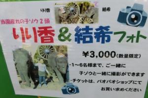 ゾウの国イベント編12