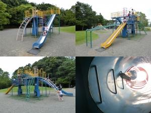 蓮池公園6