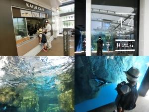 京都水族館13