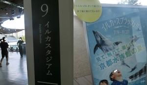 京都水族館17