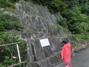 淡島探検7