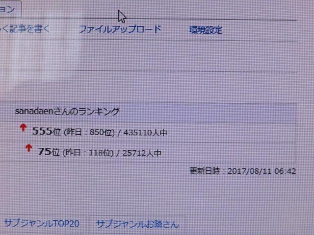 IMG_5305.jpg
