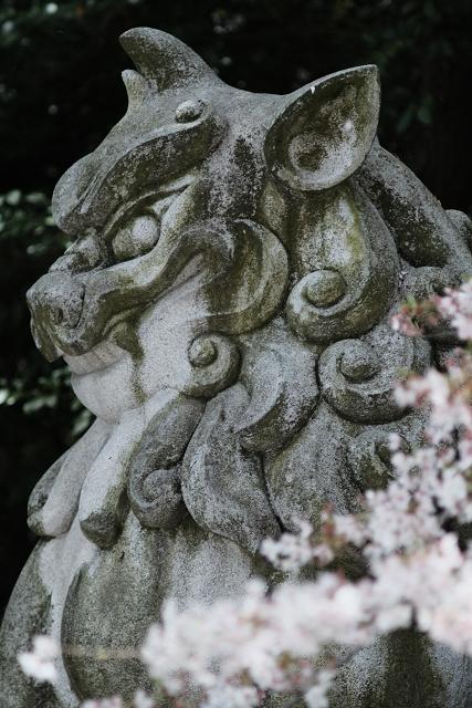AR13525と寒川神社