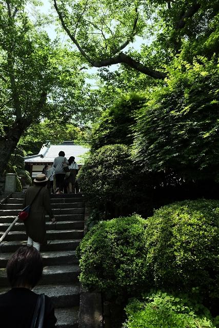 XF1428と鎌倉興福寺