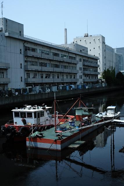 CanonNFD203535Lと横浜中央卸売市場