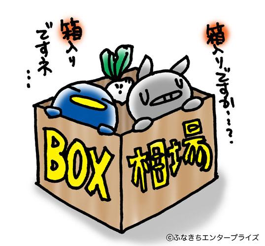 box相場