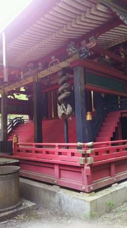 前原黄桜3