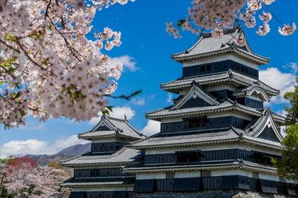 松本城 桜03 (1 - 1DSC_0008)_R