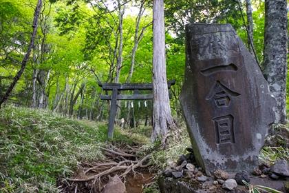 2016-5-24 男体山10 (1 - 1DSC_0012)_R
