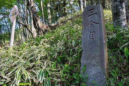 2016-5-24 男体山14 (1 - 1DSC_0017)_R