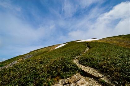 2016-5-31 谷川岳登山32 (1 - 1DSC_0068)_R