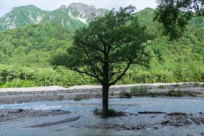 2016-7-10-11 槍ヶ岳14 (1 - 1DSC_0015)_R