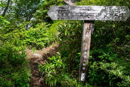 2016-7-18 武尊山28 (1 - 1DSC_0042)_R