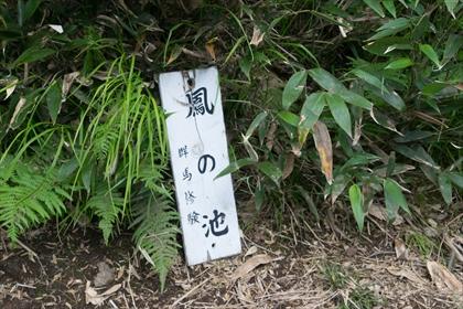2016-7-18 武尊山36 (1 - 1DSC_0054)_R