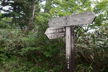 2016-7-18 武尊山54 (1 - 1DSC_0092)_R