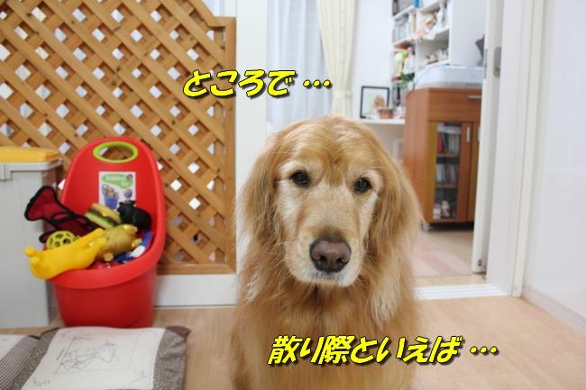 表情本屋大賞 009