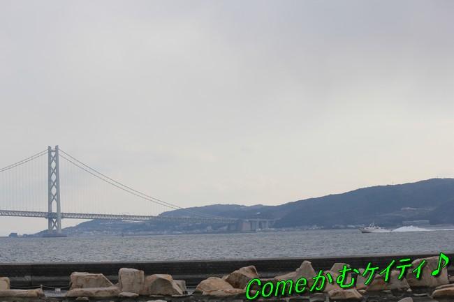 大蔵海岸 152