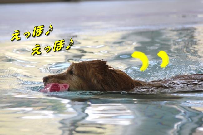 プール解禁 005