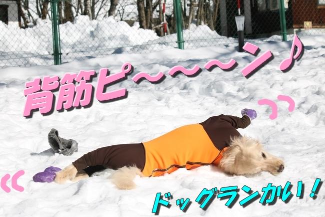 雪遊び2016 1036